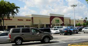 Publix Building and Parking Lot